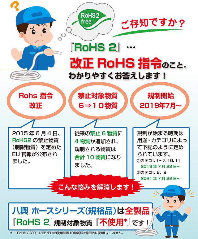 RohS2_NG
