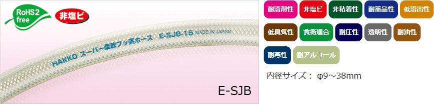 image_e-sjb