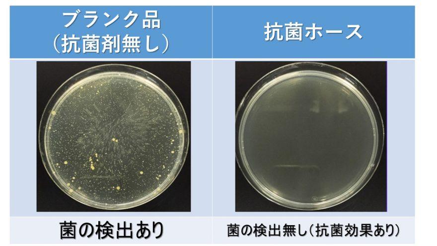抗菌性画像